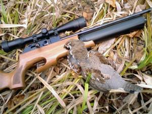Рябчик и ружье