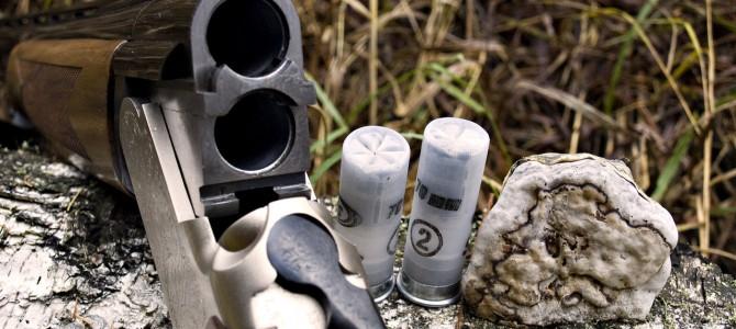 Какие патроны используются на охоте и что о них следует знать?