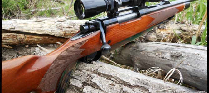 Нарезное оружие — выбор профессионалов