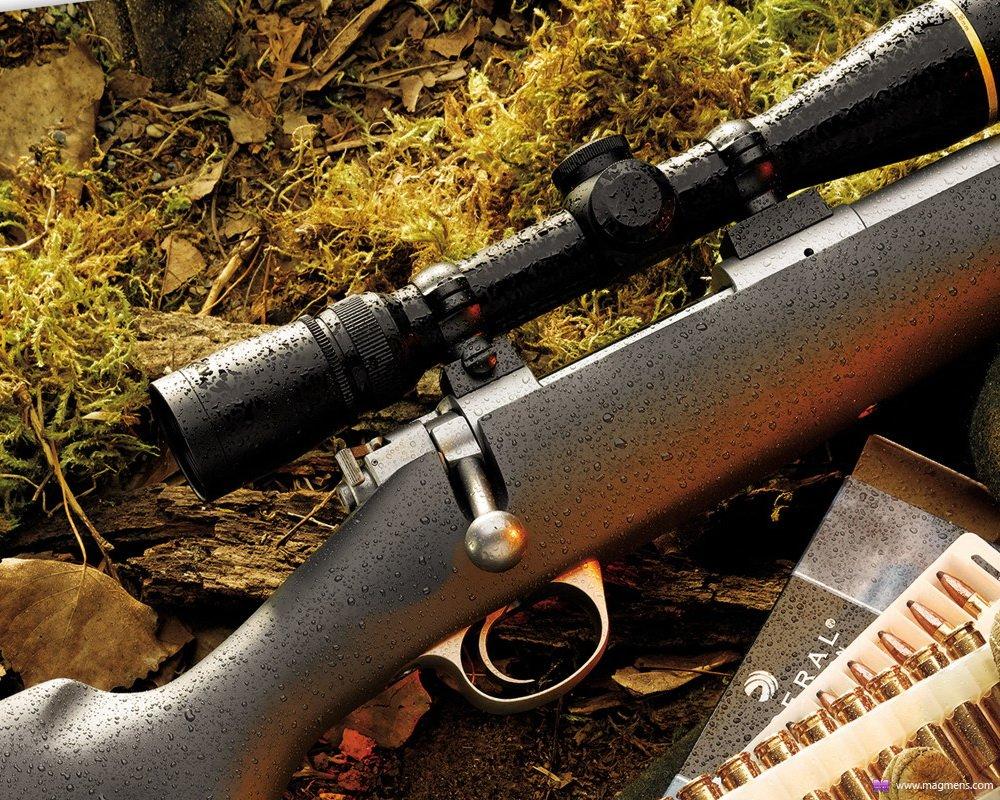 Охота на норку с ружьем