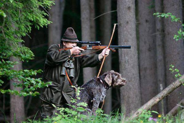 Продление разрешения на охотничье оружие в 2017 году через мфц