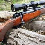 Выбор охотничьего оружия