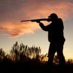 Какая охота может считаться незаконной и какое наказание это влечет