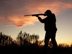 Незаконная охота