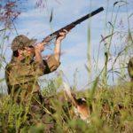 Как выбрать охотничье ружье: виды гладкоствольного оружия