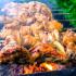 Бобриное мясо – целебные свойства и рецепты приготовления