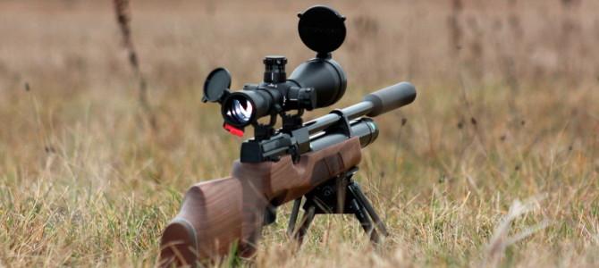 Выбор лучшей пневматической винтовки для охоты