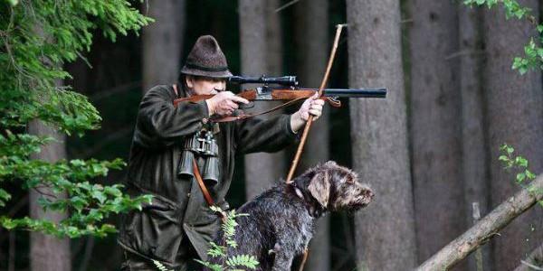 Разрешение на охотничье оружие 2020