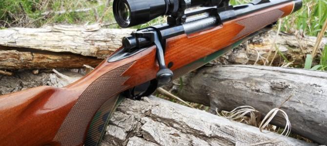 Критерии выбора охотничьего ружья для новичка